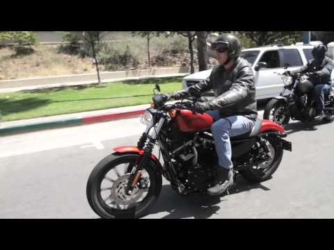 2014 Star Bolt vs. 2013 Harley Davidson 883 Iron