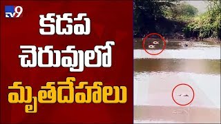 Shocking discovery of 5 dead bodies in Kadapa pond