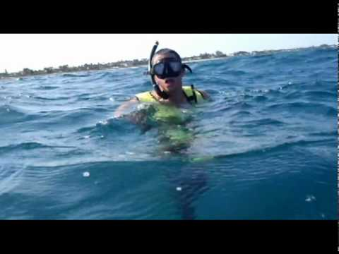 Spear Fishing off West Palm Beach, Florida