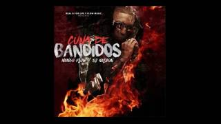 Video Cuna De Bandidos Ñengo Flow