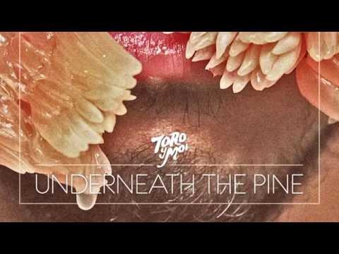 Toro y Moi  - Underneath The Pine Full Album