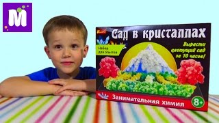 Сад в кристаллах Ранок Креатив набор проводим эксперимент Garden crystals set