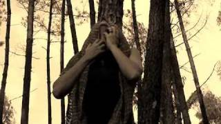 Vídeo 455 de Caetano Veloso