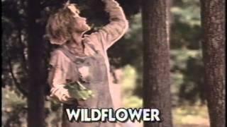 Wildflower 1991 Movie Trailer