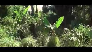 Forest Gump - Vietnam Battle
