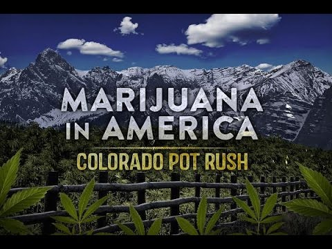 Marijuana in America Colorado Pot Rush