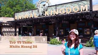 Tham quan Animal Kingdom/ Travel to Walt Disney World