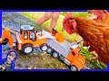 Dump Truck and Backhoe Feed Chickens!