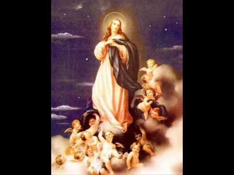 Ala Virgen del Rosario-Musica de Organo
