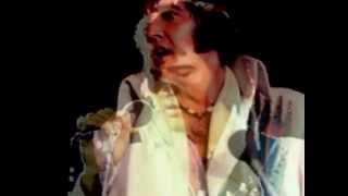 Vídeo 314 de Elvis Presley