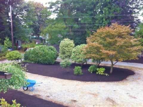 Fall Clean Up, Barking, Mulching, shrub  prunning, tree carfe, compost