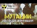 Мутации наследие Чернобыля mp3