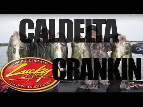 California Delta Fishing: Cranking Lucky Craft BDS