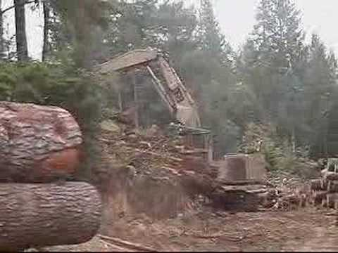 Loading Logs on a Logging Truck