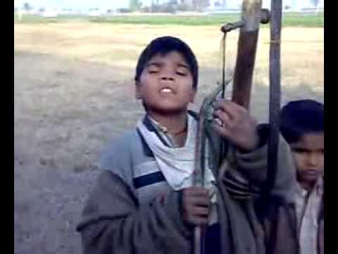 Sweet Voice Of Child Vipjatt Com video