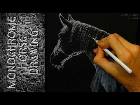 Monochrome Horse - Drawing