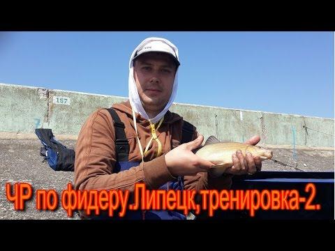 отчеты с чемпионата россии по фидеру