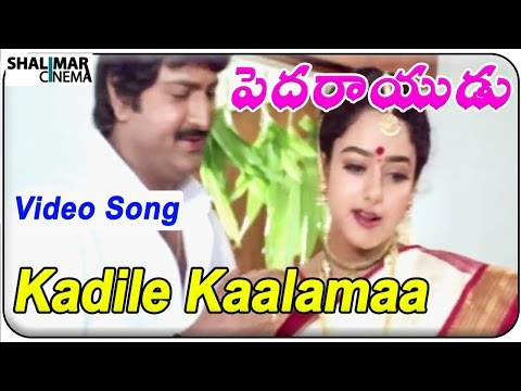 Pedarayudu Movie || Kadile Kaalamaa  Video Song || Mohan Babu,soundarya video