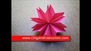 Origami Instructions Origami Carnation