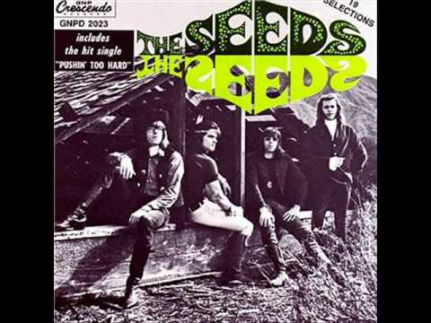 The Seeds - Pushin