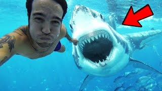 Top 5 CRAZIEST Shark Attacks Caught On Youtube! (Can