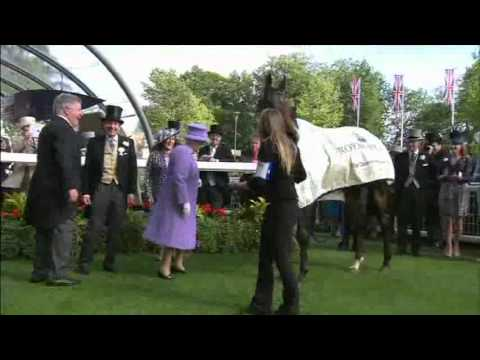 Queen has Royal Ascot Winner ESTIMATE  in the Queens Vase 2012
