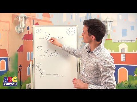 Основы английского языка за 20 минут