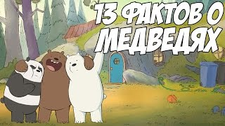 ВСЯ ПРАВДА О МЕДВЕДЯХ - 13 КЛЁВЫХ ФАКТОВ (WE BARE BEARS)