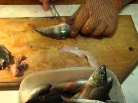 разделка морского окуня возьми филей  видео