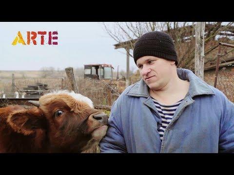 Наш канал показали на ARTE / Немецко-французская группа общественных телекомпаний / Семья в деревне