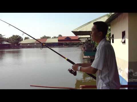 Mr Hoàng Hùng Câu Cá Chép - thegioicauca.com