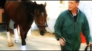 HRTV Inside Information - Barbaro