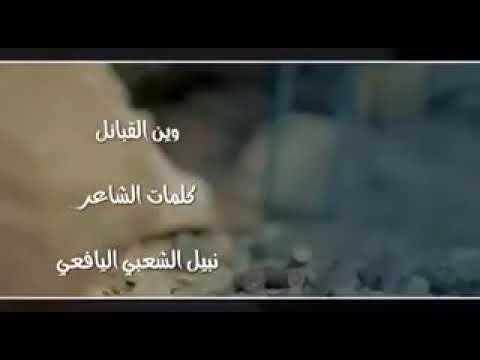 فيديو: أول شيلة يمنية تدعو لثورة شعبية ضد الحوثيين بعد مقتل علي عبدالله صالح