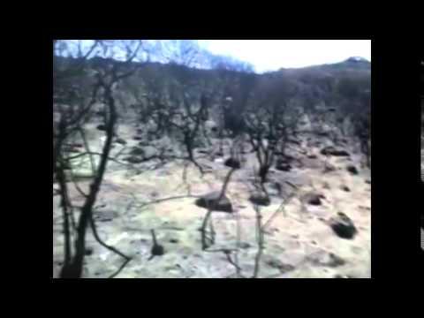 Recorrido por cerros donde fallecieron 4 brigadistas