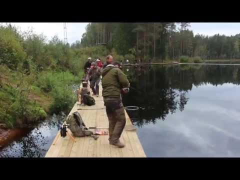 рыбалка в петербурге летом