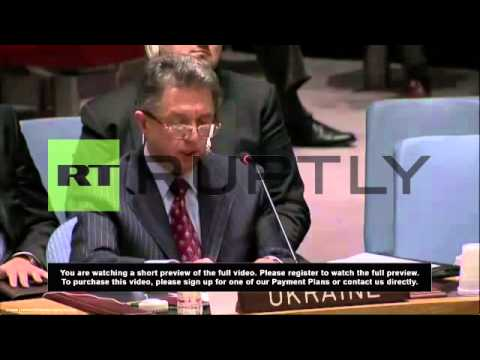 United Nations: Russia's Crimea veto is no surprise - Ukraine UN ambassador