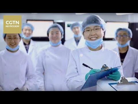 Великолепный Китай Серия 1 Проекты мечты [Age0+]