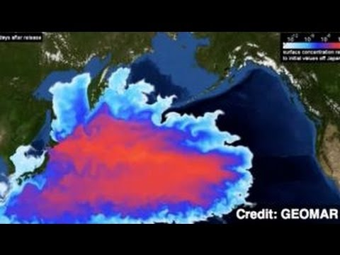 Activist Warns: 'Days of Eating Pacific Ocean Fish Are Over'