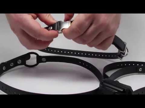 E-Collar Technologies Quick Snap Bungee Dog Collar http://dash35.com
