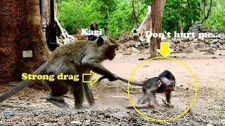 Mom..help! Don't drag me like this Kari| Pity Maddix cry so sad got kidnap by Kari long time