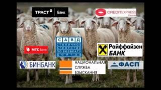 Коллекторы против Дмитрия Алексеевича 7