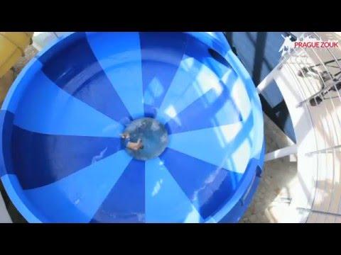 PRAGUE ZOUK CONGRESS AQUAPARK DAY - VIDEO PROMO