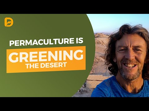 Permaculture is Greening the Desert