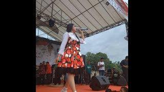 download lagu Via Vallen Sayang Rimbo Bujang Take By Yi Action gratis