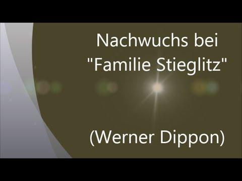 Nachwuchs bei Familie Stieglitz  - Alle meine Tiere - (Werner Dippon)