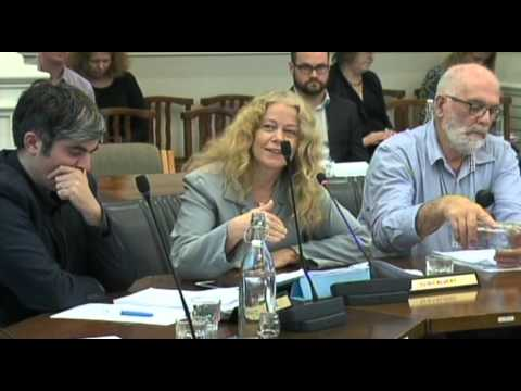 Dunedin City Council - Community and Environment Committee - March 15 2016