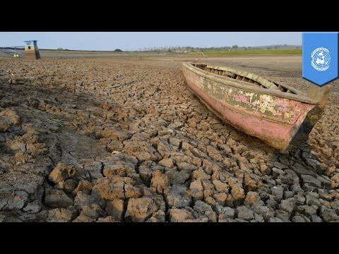 Global climate change: 2015 to be hottest year on record due to global warming, El Niño - TomoNews