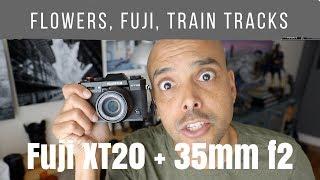 Flowers, XT20, train tracks and the Fuji 35mm F2