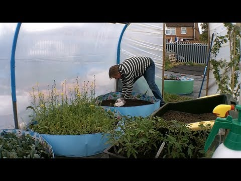 Rick s Allotment ep 68)