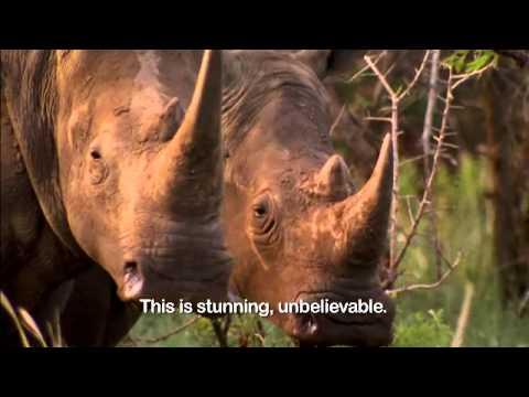 Zuid-Afrika onze hoogtepunten